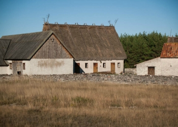 Thatched roofed buildings on Fårö Island