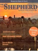 Shepherd Magazine