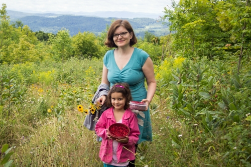 berry picking at VT Grand View Farm